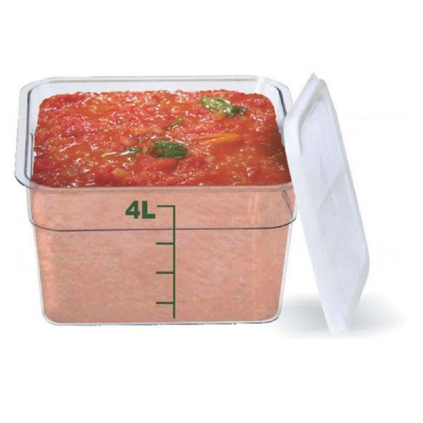 Organizador Box - 4Lts